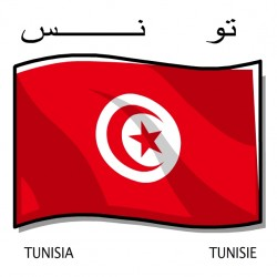 COLLECTOR Team of TUNISIA