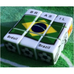 COLLECTOR Team of Brazil