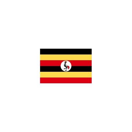 COLLECTOR Team of Ouganda