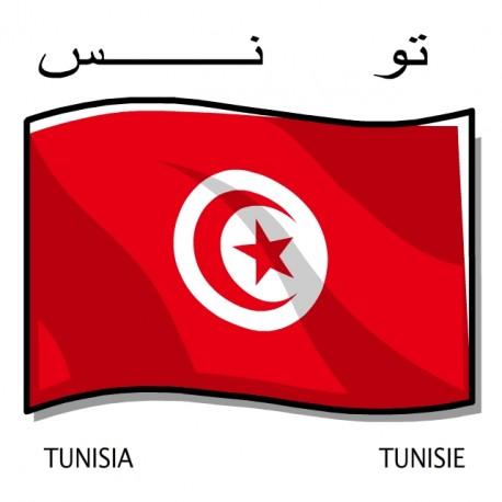 COLLECTOR Team of TUNISIA